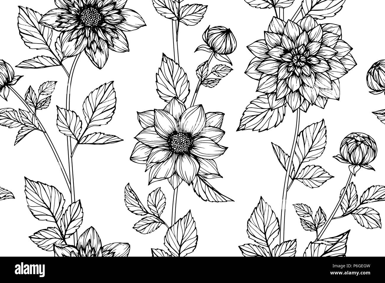 Seamless Dahlia Flower Pattern Background Black And White With