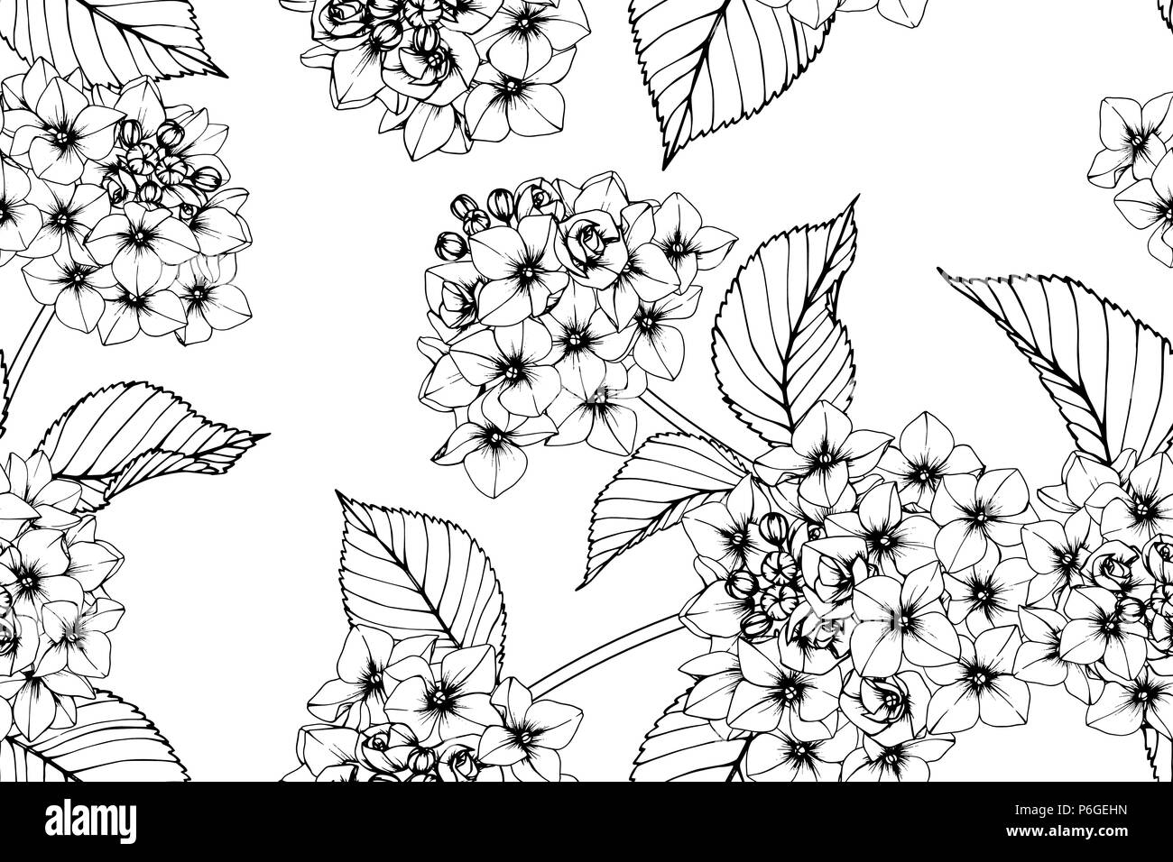 Seamless Hydrangea flower pattern background. Black and white with ...