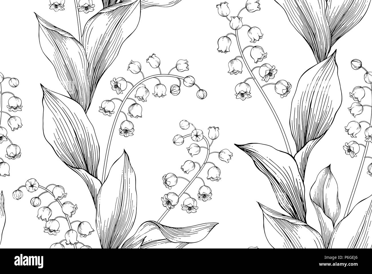 lily of the valley drawing stock photos amp lily of the