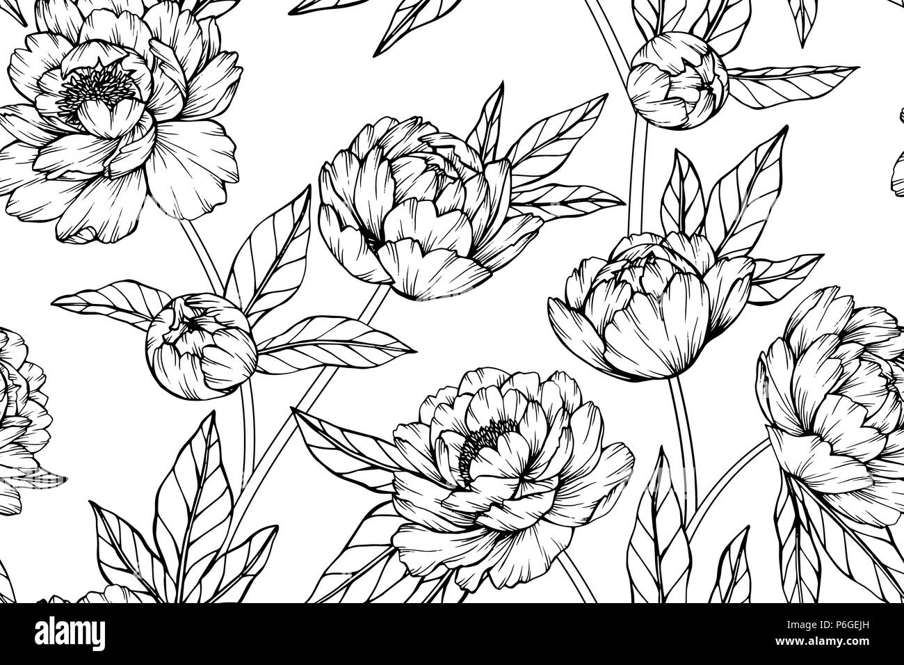 Seamless Peony Flower Pattern Background Black And White With
