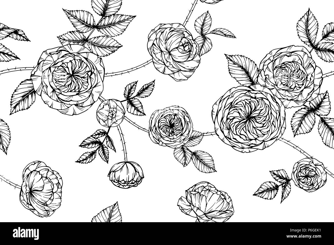 Seamless Rose Flower Pattern Background Black And White With