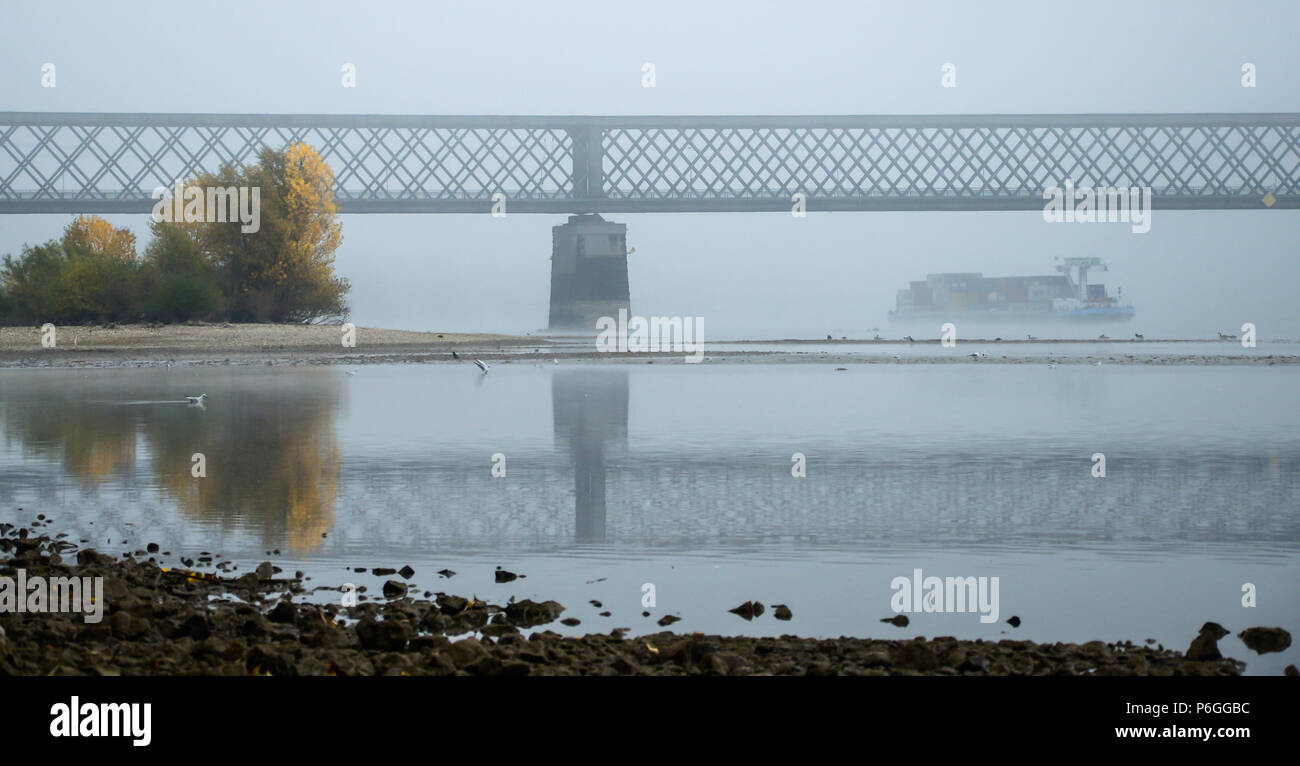 Foggy autumn morning in Germany on the river Rhine, a flowing barge in the distance an old railway bridge. Stock Photo