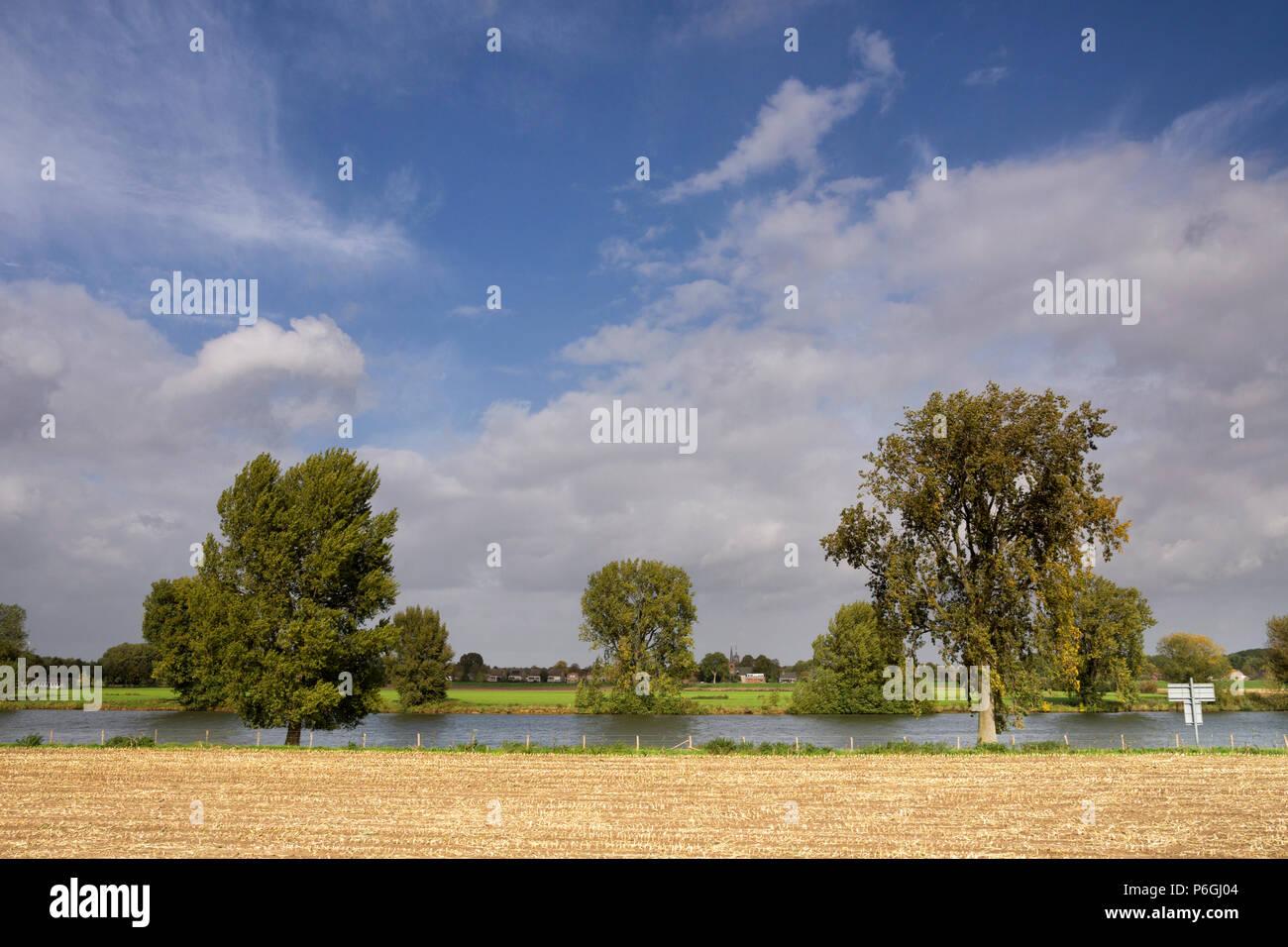 View at the river Maas - Stock Image