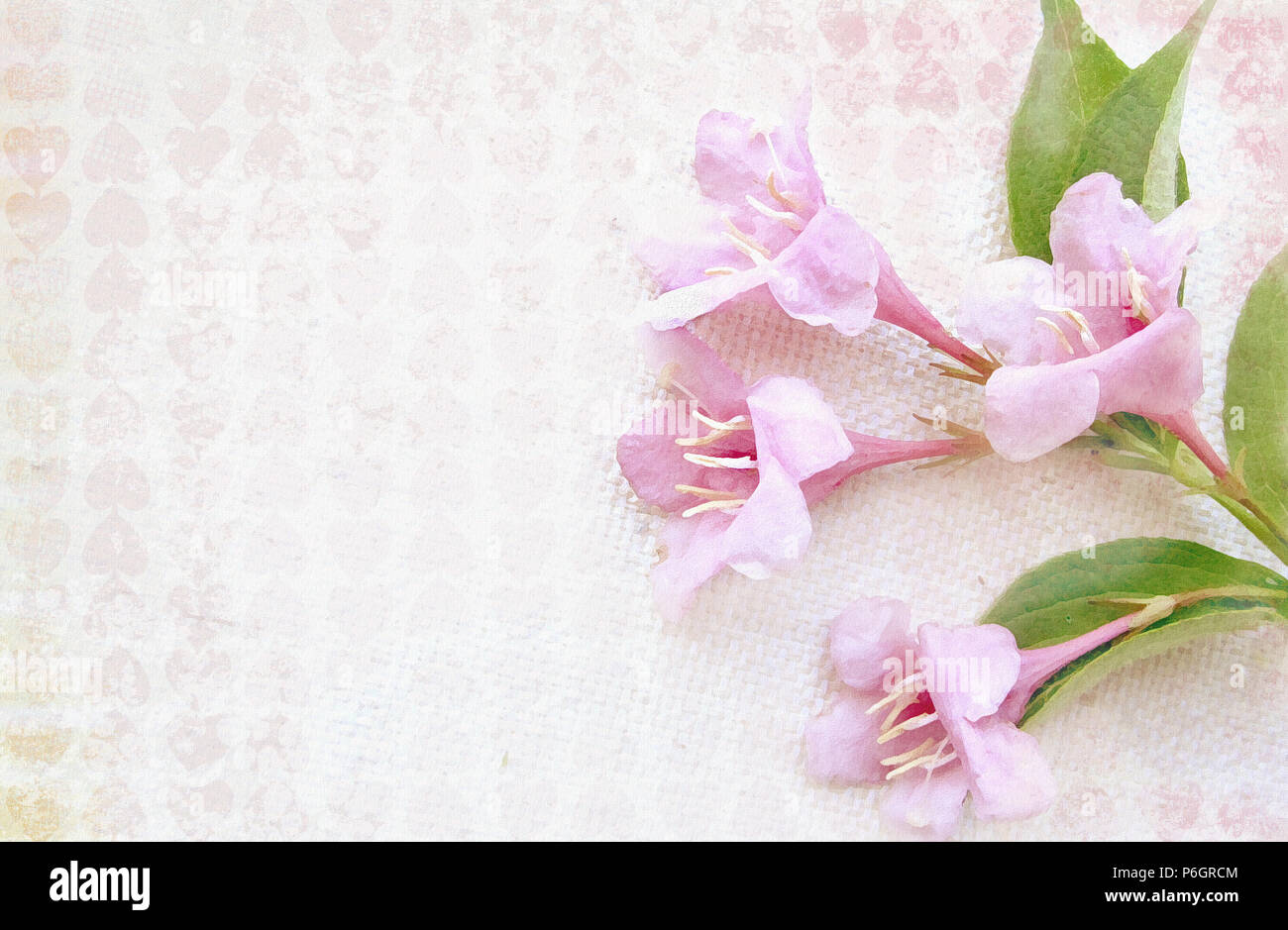 Light Patterned Textured Background With Pink Flowers On A