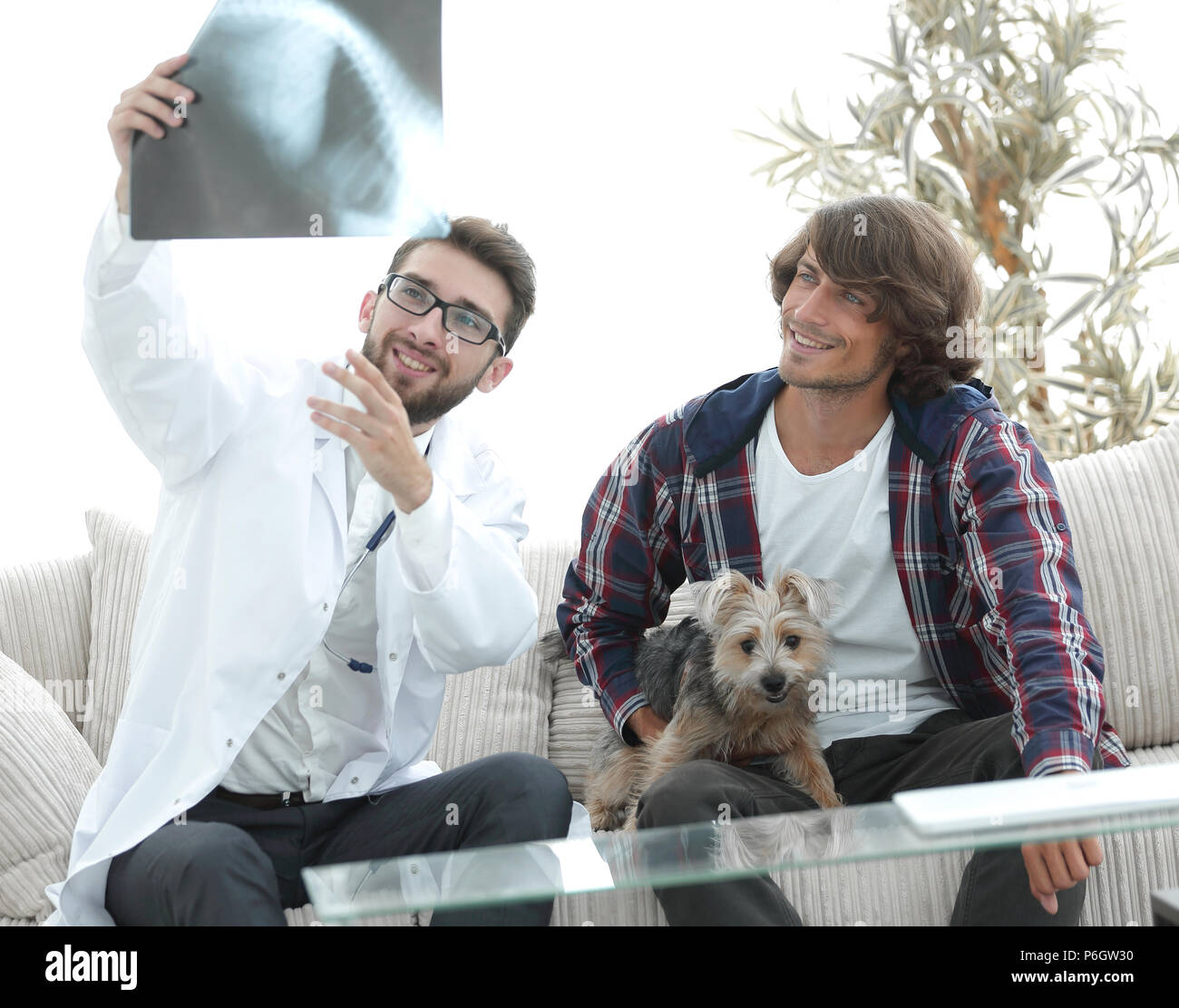 veterinarian showing an x-ray to the owner of the dog. - Stock Image
