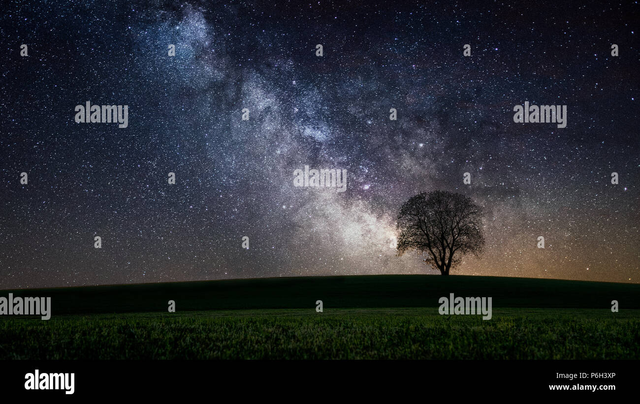 Milkyway with a lonely tree in fron of a field in the bavarian forest - Stock Image
