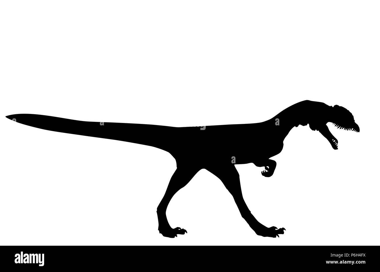 Dinosaur Dilophosaurus wetherilli black silhouette on white background, vector, eps 10 - Stock Image