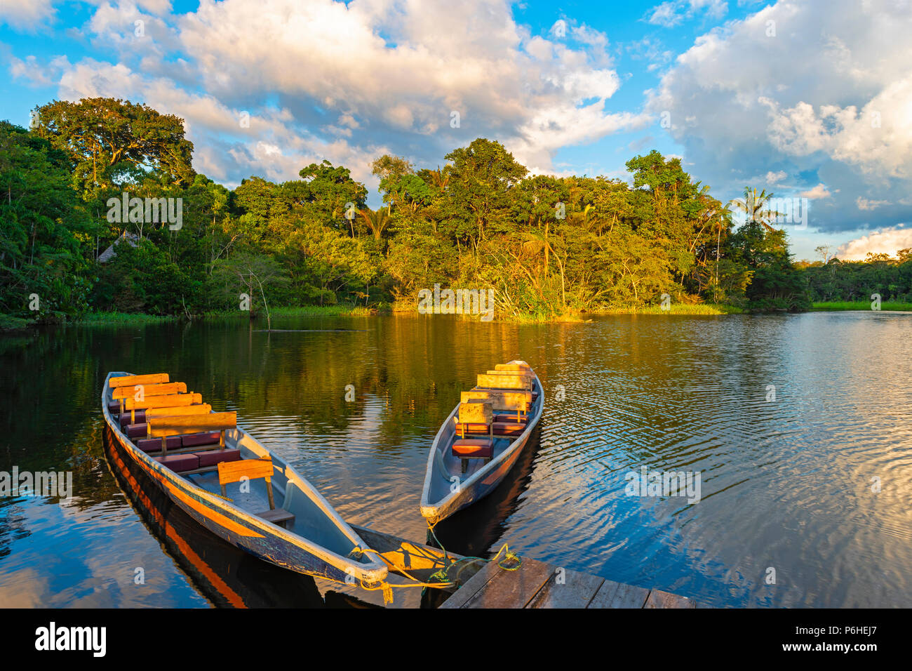 Two traditional wooden canoes at sunset in the Amazon River Basin with the tropical rainforest in the background, Yasuni National Park, Ecuador. Stock Photo
