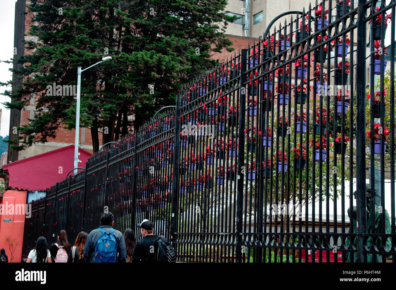 Hanging baskets, or hanging buckets, pots, on railings in Bogota, containing flowers. - Stock Image