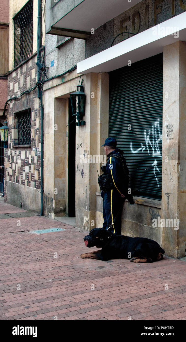 Man and dog by Graffiti strewn walls in Bogota, Colombia, without the art - Stock Image