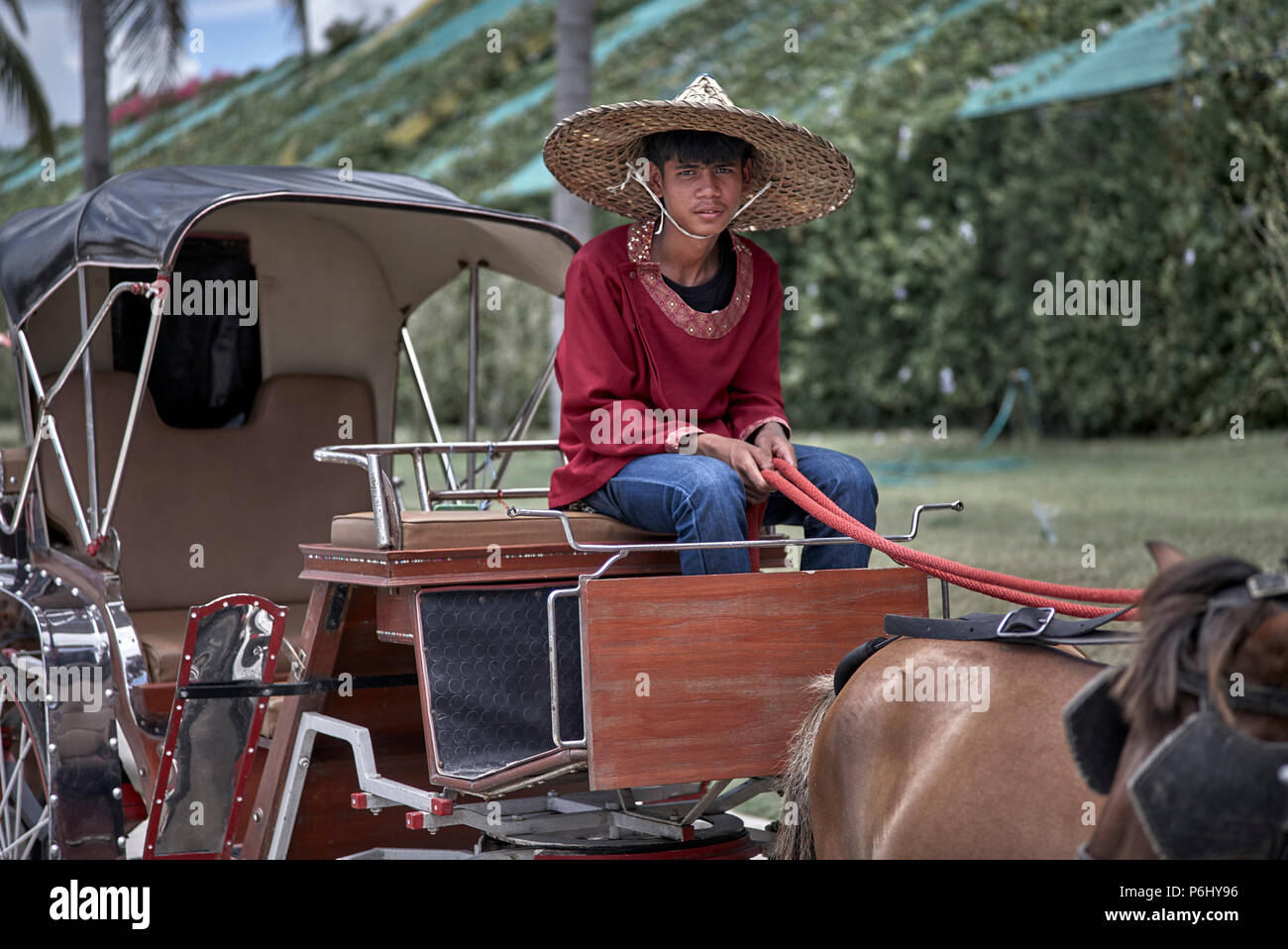 Horse and trap tourist ride Thailand Southeast Asia - Stock Image