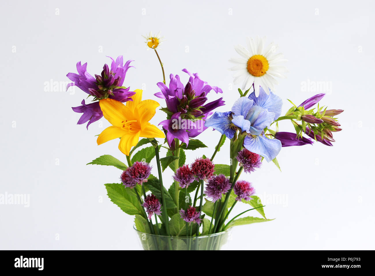 A Bouquet Of Different Wild Field And Garden Flowers Chamomile
