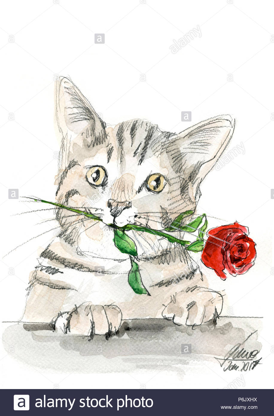 cat and rose happy new year