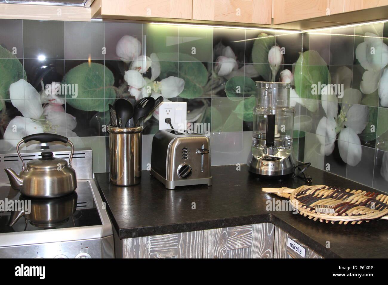 Modern Kitchen Counter With Floral Glass Backsplash Tiles