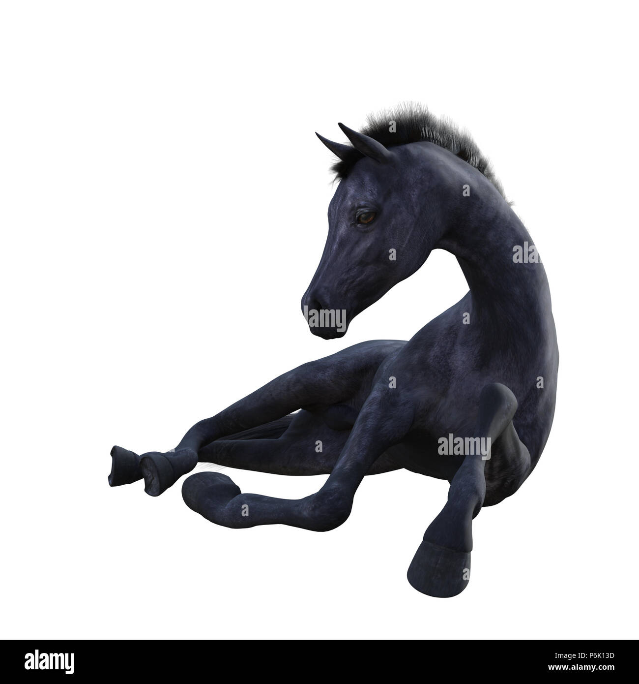 Black Foal Baby Horse Isolated On White 3d Render Stock Photo Alamy