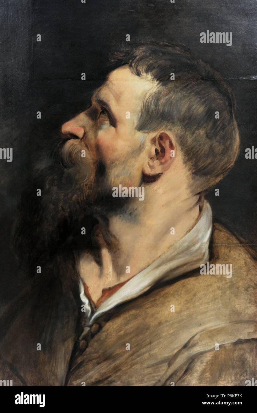 Man and Artist Peter Paul Rubens
