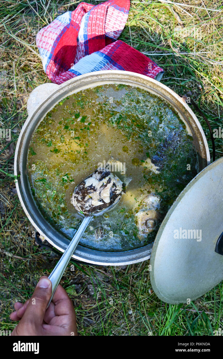 Fish soup boils in cauldron at the stake on the nature. Soup in a pot in the fire.  Top view. The man's hand takes out a piece of fish with a spoon. - Stock Image