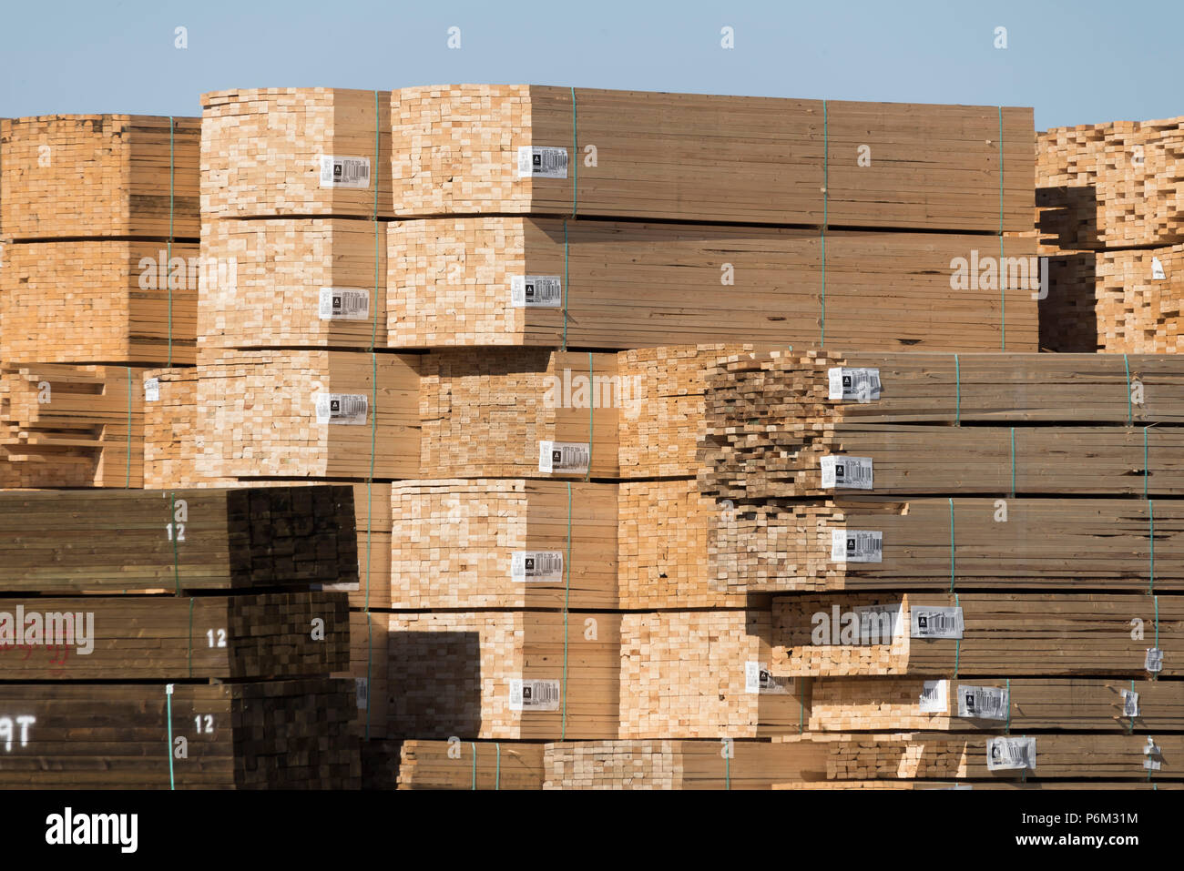 Canadian softwood lumber bundled and stacked ready for export to world markets Stock Photo