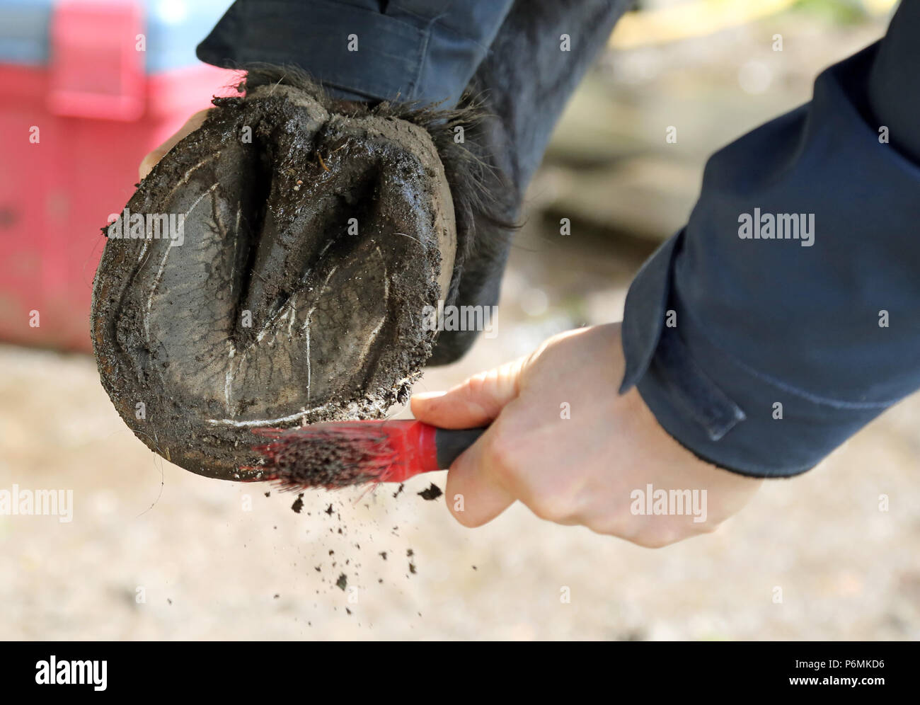 Melbeck, barefoot is scratched out - Stock Image