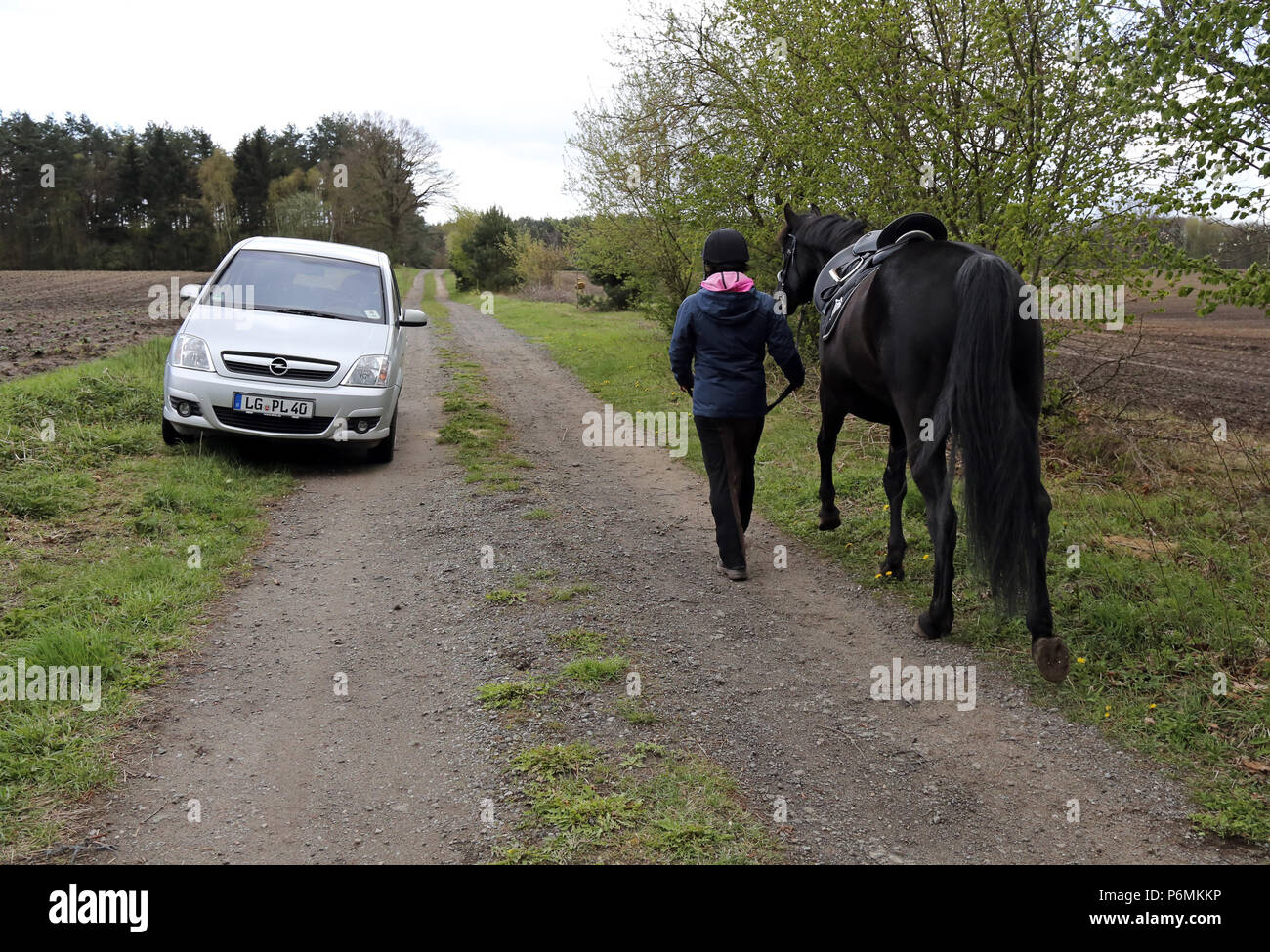 Melbeck, rider leads her horse past a parked car - Stock Image