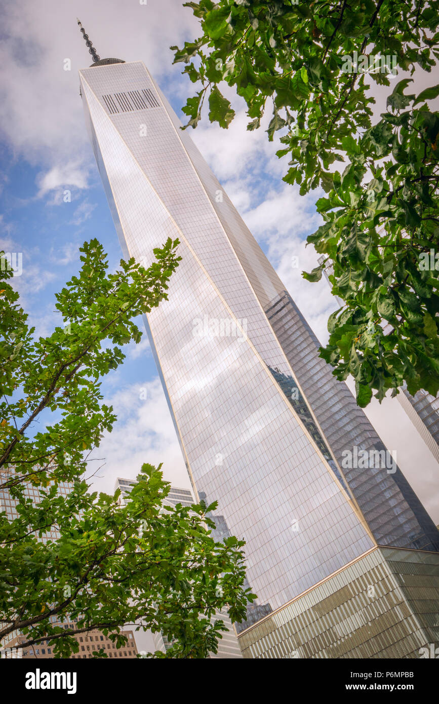 The One World Trade Center in Lower Manhattan, New York City, through the trees. - Stock Image