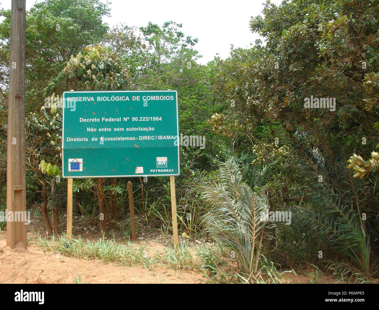 Comboios Biological Reserve, Atlantic Forest, Linhares, Aracruz, Espirito Santo, Brazil. Stock Photo