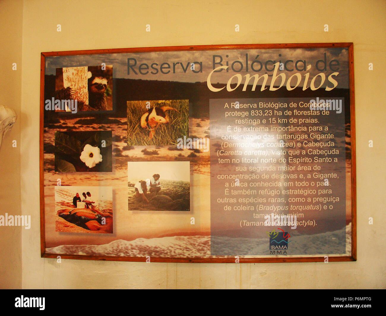 Protective Base, Sea Turtles, Comboios Biological Reserve Espírirto Santo, Brazil. Stock Photo