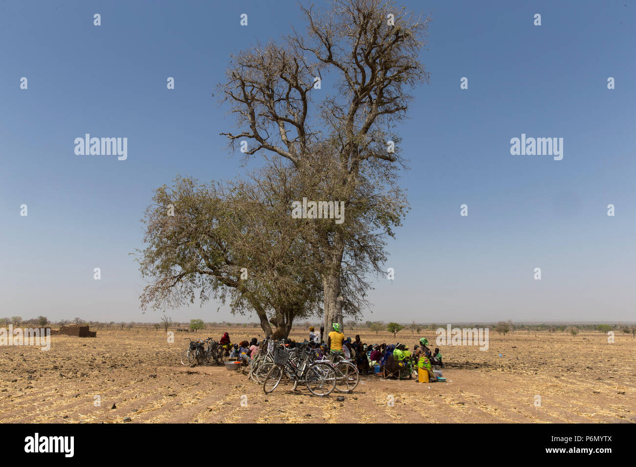 Members of a women's microfinance cooperative reimbursing their loans under a tree in Northern Togo. - Stock Image