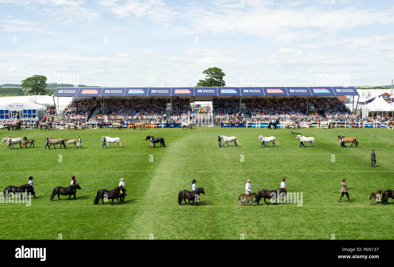 RHS 2018: Horses on display during the grand parade at the Royal Highland Show, Inglsiton, Edinburgh. - Stock Image