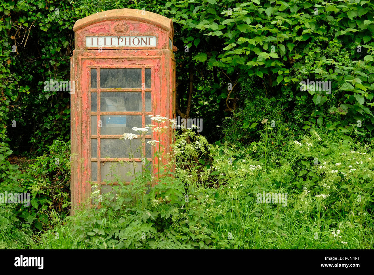 Disused red telephone kiosk in Herefordshire, England - Stock Image