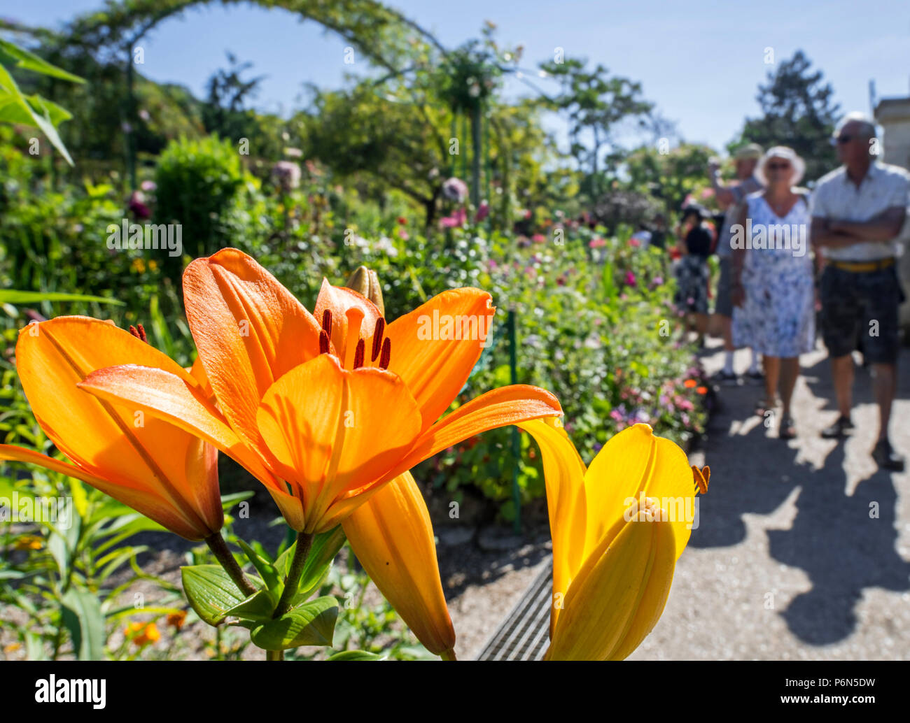 Flowers Giverny Normandy France Eure Europe Spring Stock Photos