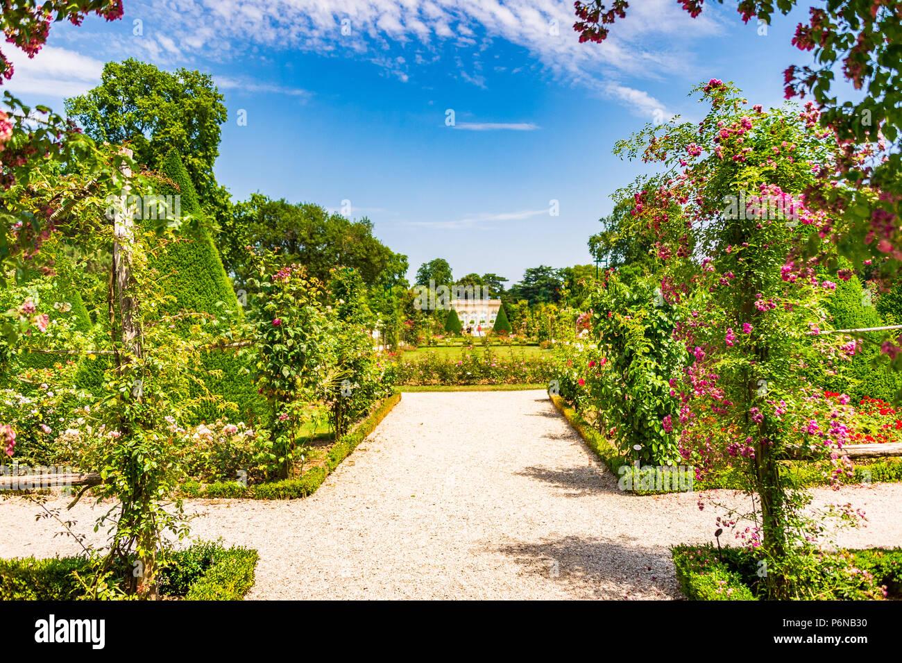 The spectacular Rose Garden within Parc de Bagatelle in Paris, France Stock Photo
