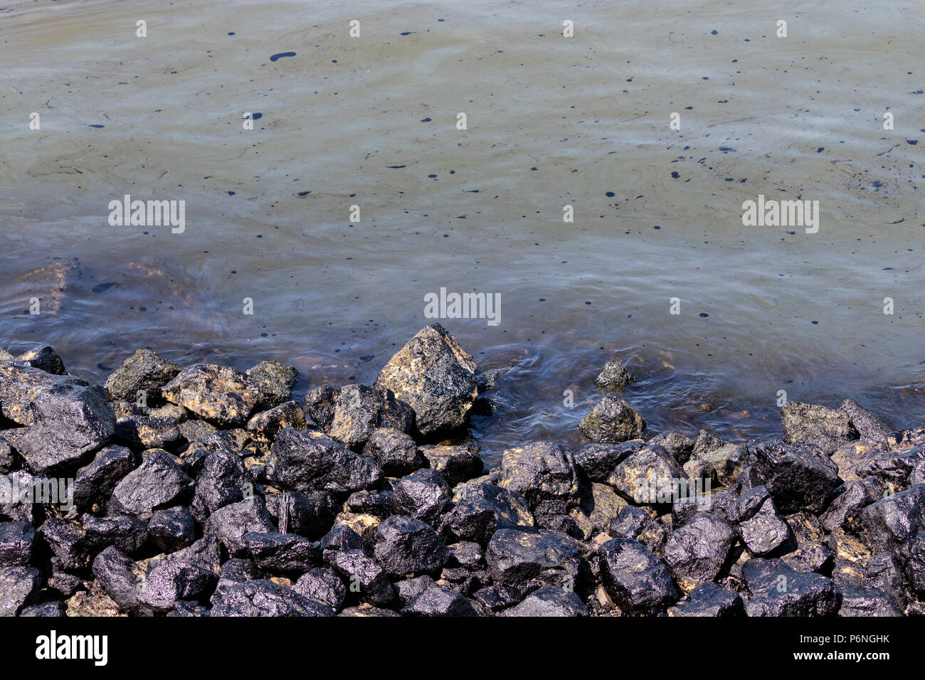 oil pollution at the shore - Stock Image
