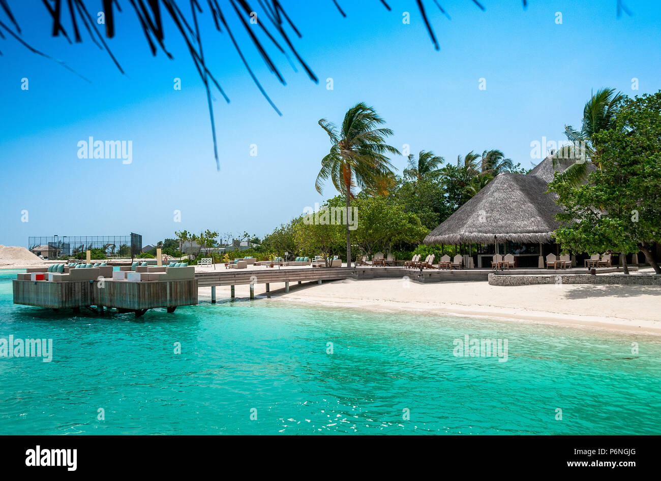 Tropical Island Beach Ambience Sound: Maldives Beautiful Beach Background White Sandy Tropical