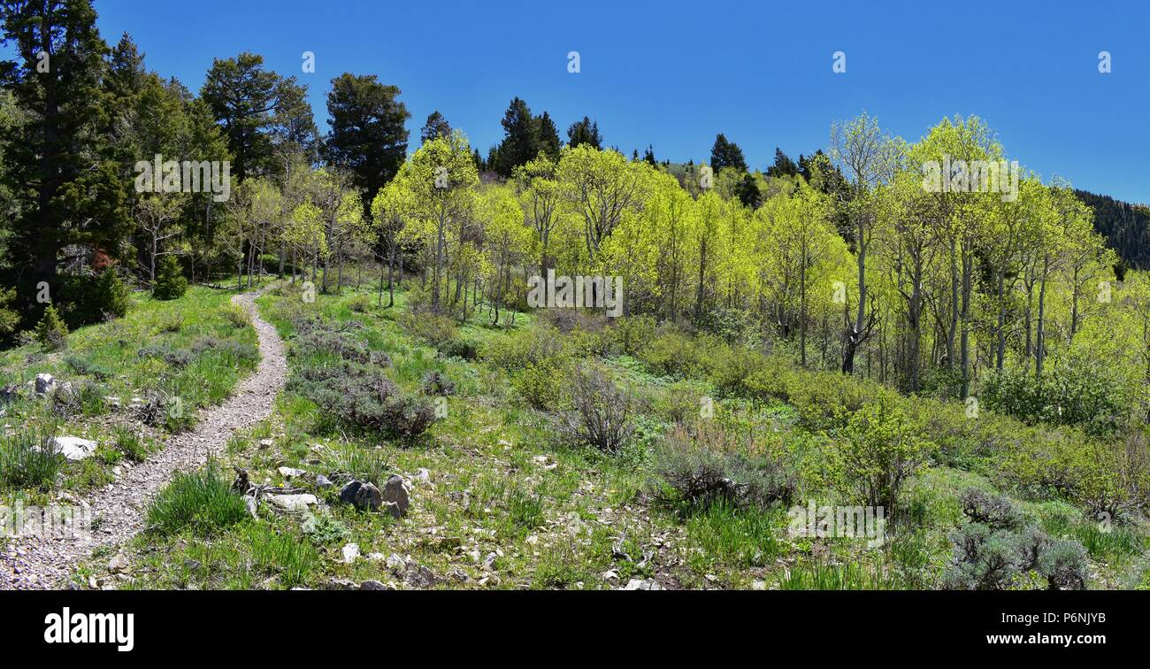 Hiking path views of the Oquirrh Mountains along the Wasatch Front Rocky Mountains, by Kennecott Rio Tinto Copper mine, Tooele and the Great Salt Lake Stock Photo