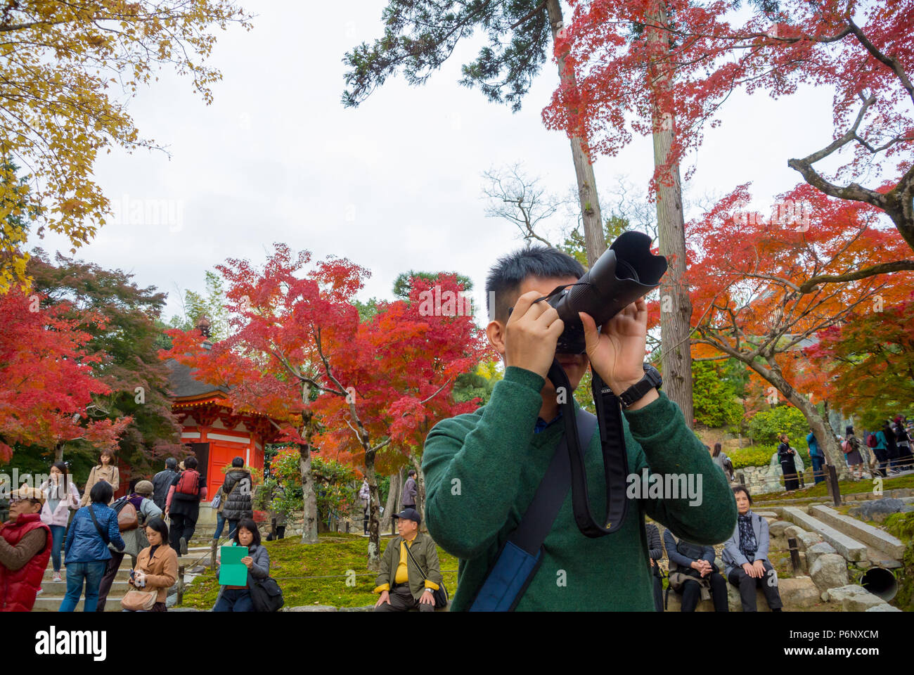 Asian tourist taking a photo of Koyo, Colored leaves of maple trees at Tofukuji temple, Kyoto, Japan - Stock Image