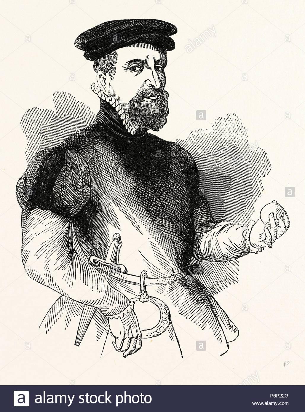 Portrait Sir Thomas Gresham, English merchant and financier, London, England, engraving 19th century, Britain, UK. - Stock Image