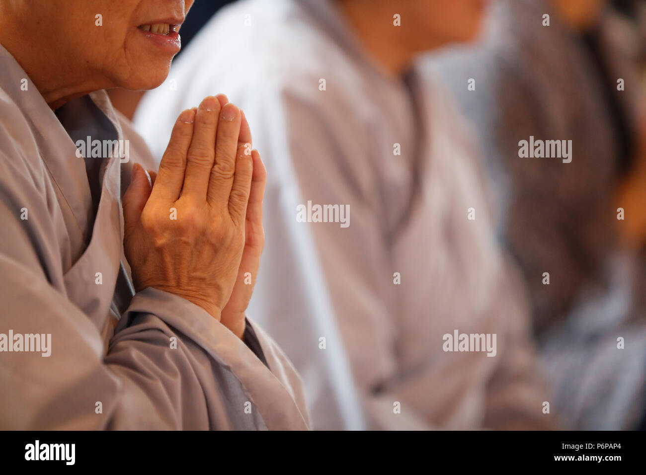 Chua Tu An Buddhist temple. Monk at Vietnamese New Year ( Tet ) celebration.  Saint-Pierre en Faucigny. France. - Stock Image