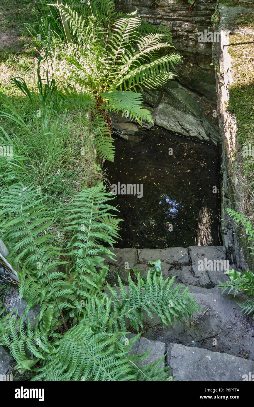 St Mary's Church, Pilleth, near Knighton, Powys, Wales, UK. The ancient holy well is said to have healing properties for the eyes. - Stock Image