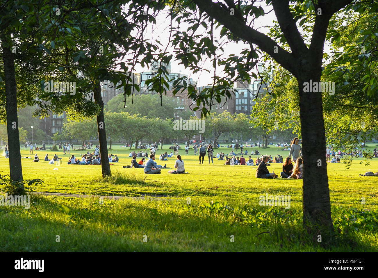 The Meadows, Edinburgh, Scotland, UK - a large green open space close to Edinburgh University during the 2018 heatwave - Stock Image
