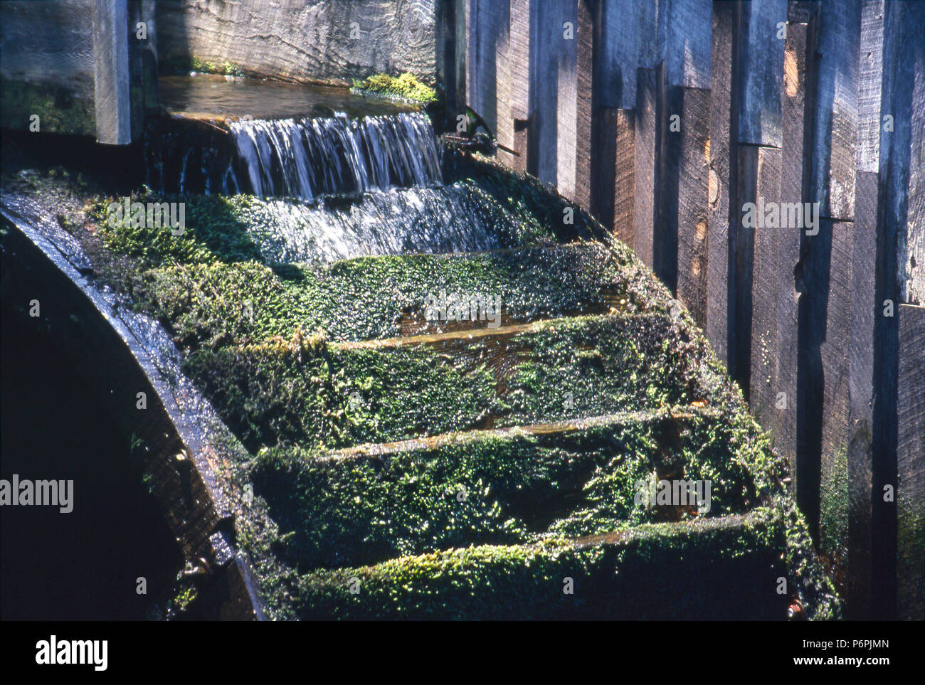 Water wheel of pioneer corn mill in Cades Cove, Smoky Mountains National Park, Tennessee. Photograph - Stock Image