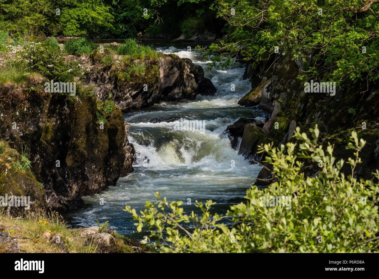 Cenarth Waterfalls Carmarthenshire Wales Stock Photo