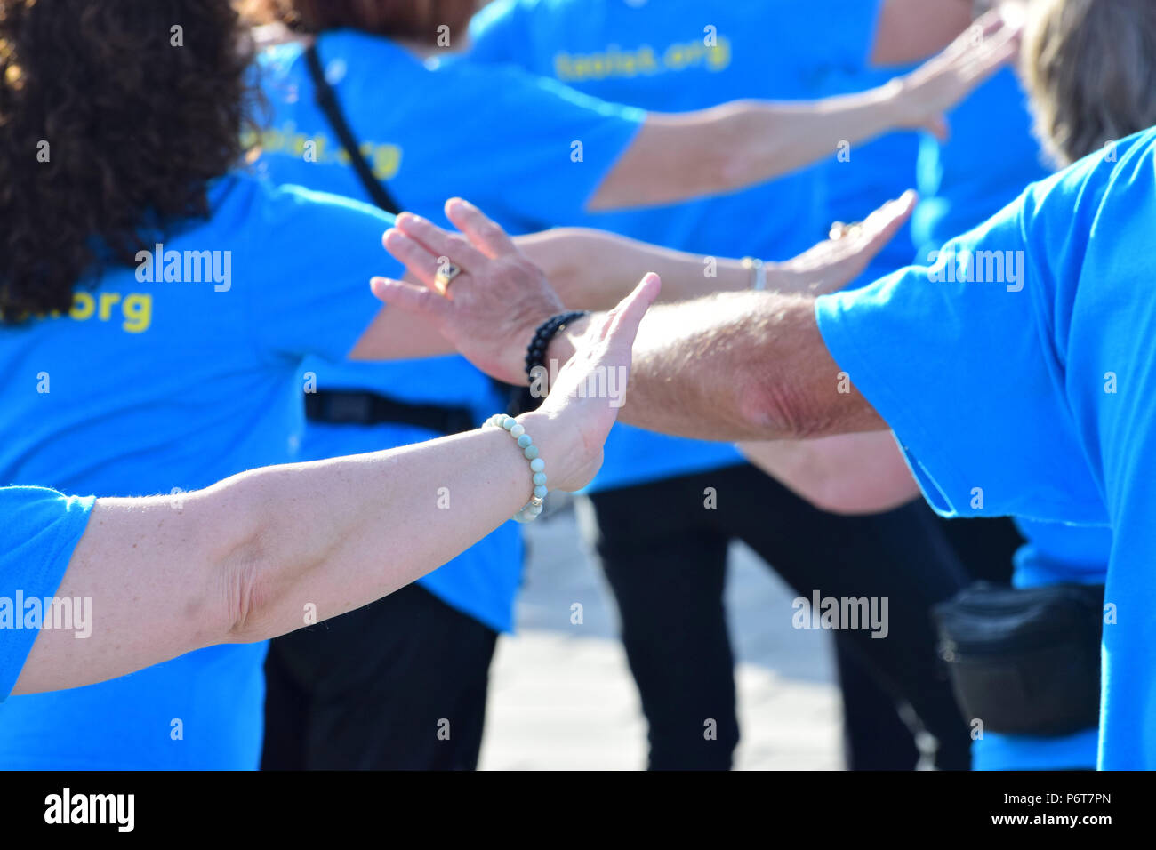 Fung loy kok taoist tai chi 2018 international gathering in Gaspé, Québec - Stock Image