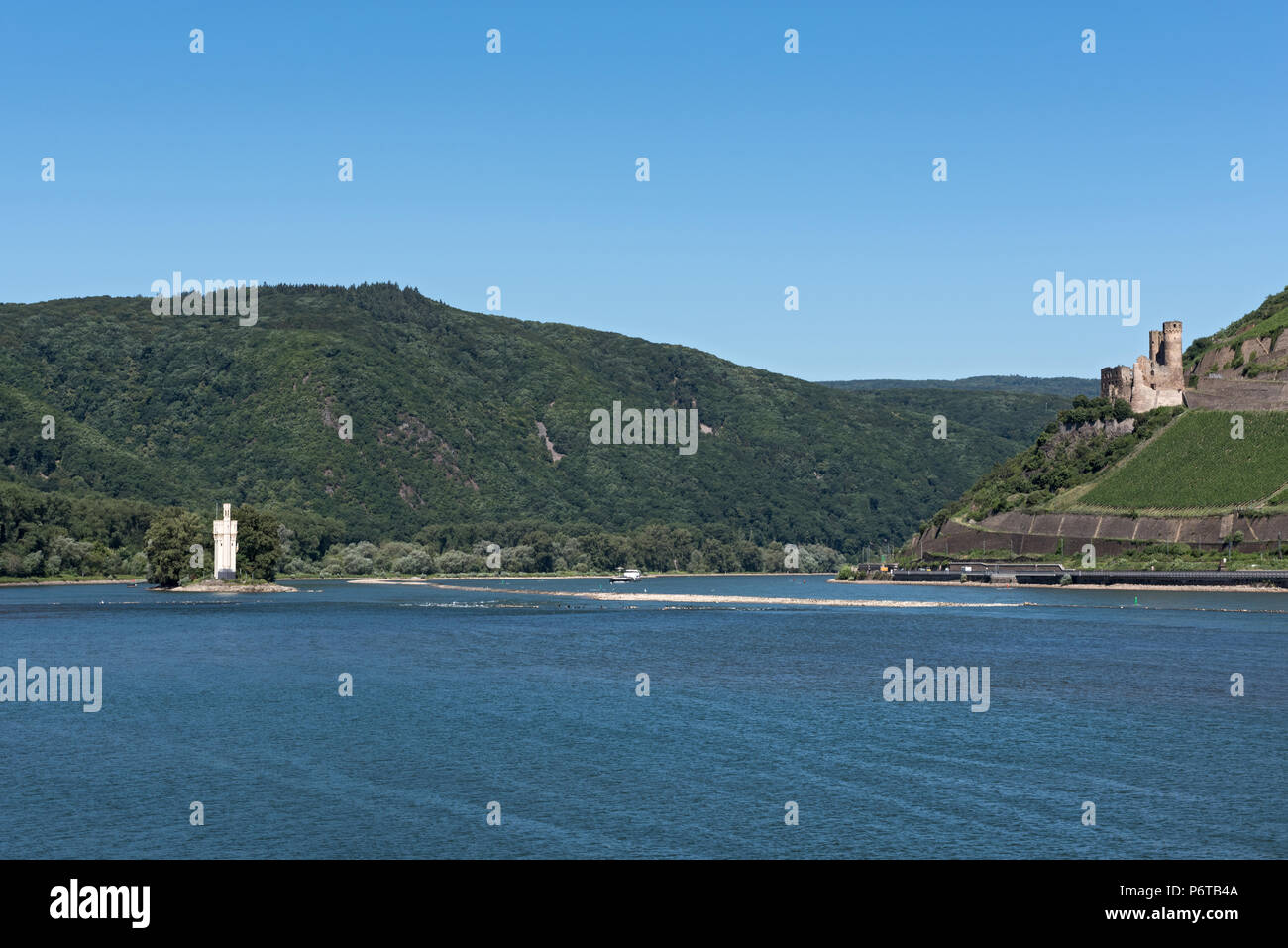 Panoramic view over the rhine river to the mauseturm and Ehrenfels Castle, Germany - Stock Image