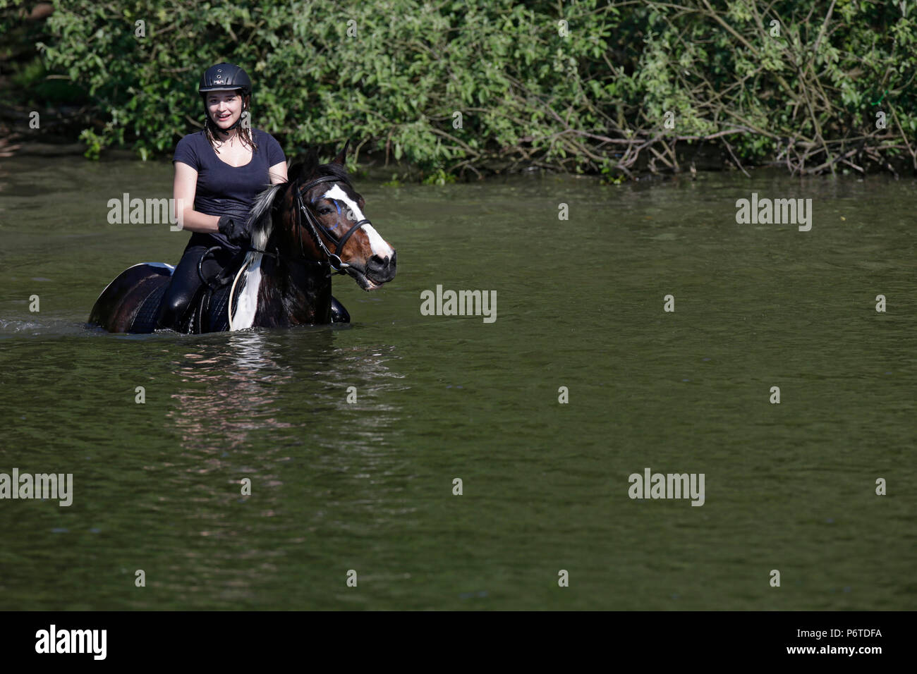 Oberoderwitz, Maedchen rides her horse through a lake - Stock Image