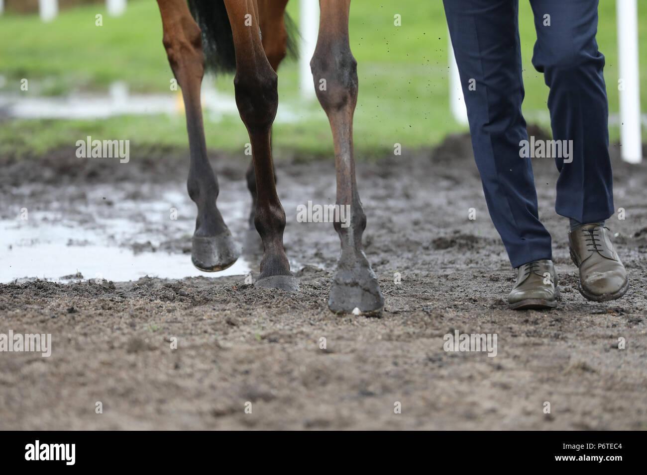 Hamburg, horses and human legs run over muddy ground - Stock Image