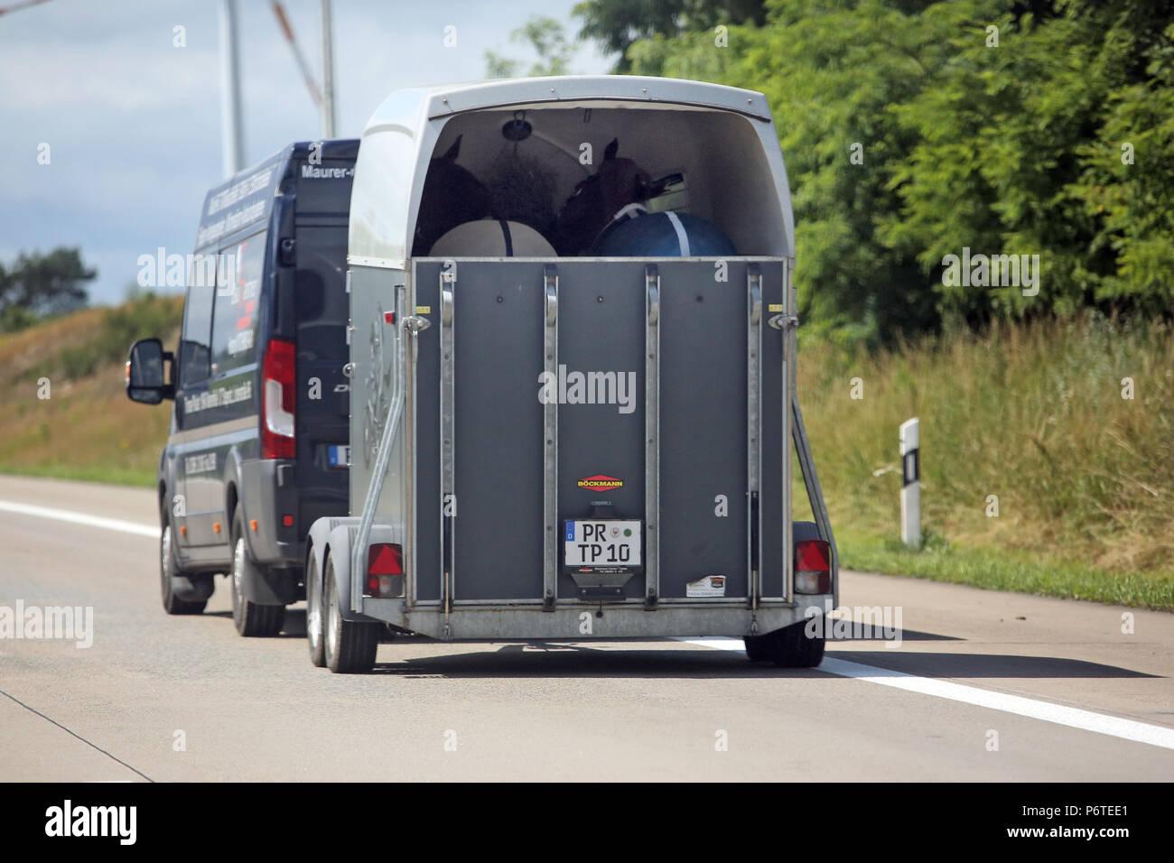 Hamburg, minibus with horse trailer on the highway - Stock Image