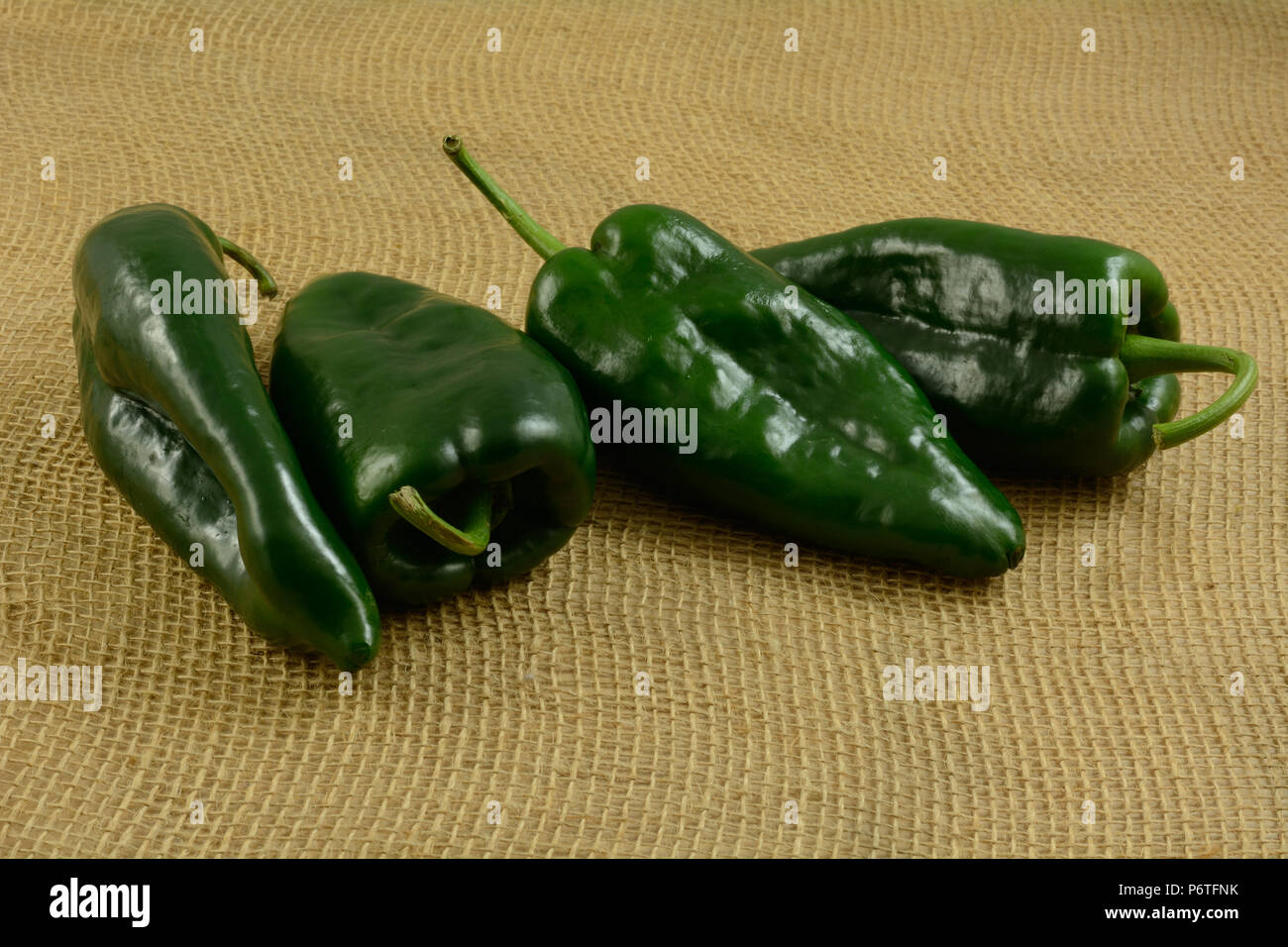 four raw whole freshly rinsed poblano peppers on burlap Stock Photo