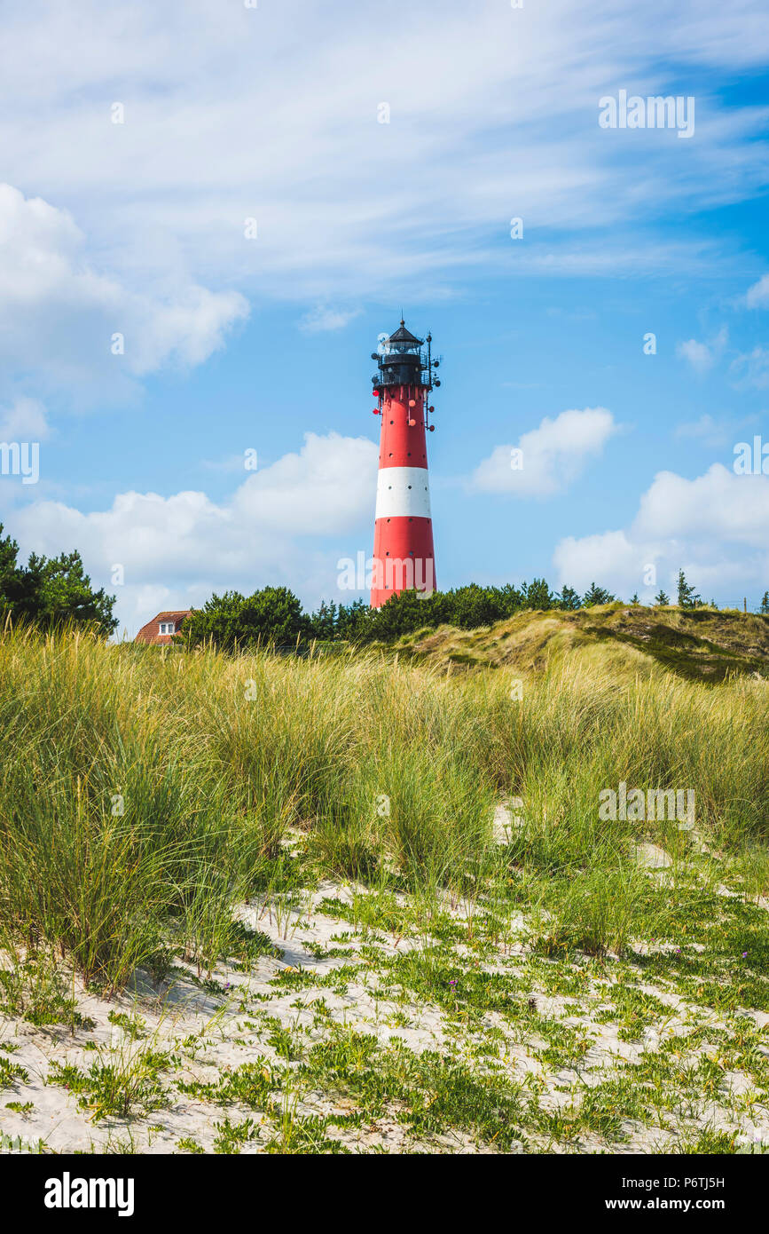 Hörnum, Sylt island, North Frisia, Schleswig-Holstein, Germany. - Stock Image