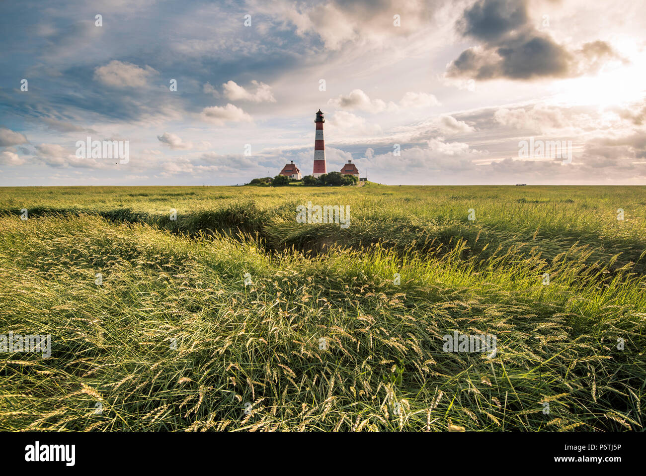 Westerhever lighthouse, Eiderstedt, North Frisia, Schleswig-Holstein, Germany. - Stock Image